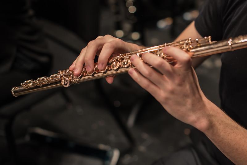 181111 Northbrook Symphony (Photo by Johnny Nevin) -3644.jpg