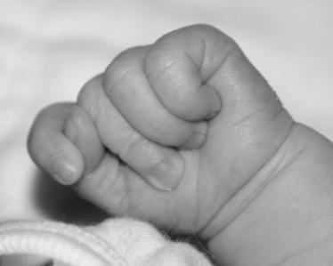 Lacy's Birth Announcement