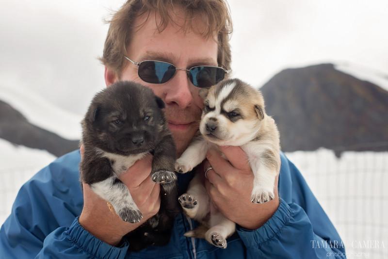 Puppies-12-2.jpg