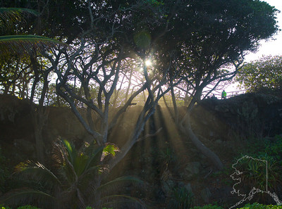 Photography From Around Maui
