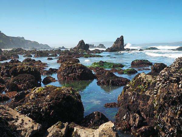 Dillon Beach - Bodega Bay