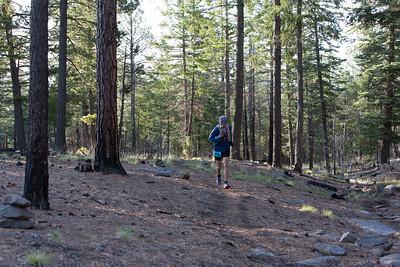 Jemez Mountain Trail Runs 2015