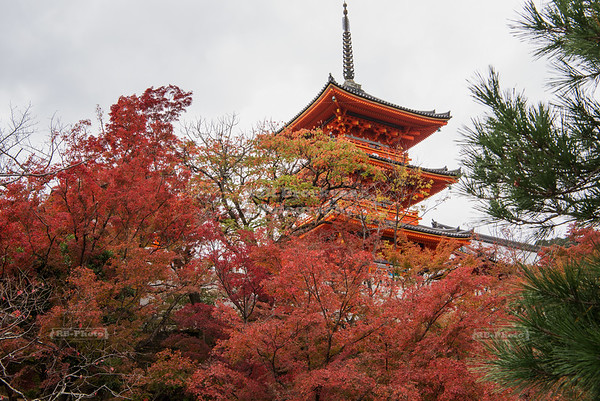 Japan - Kyoto - Kiyomizu-dera Shrine