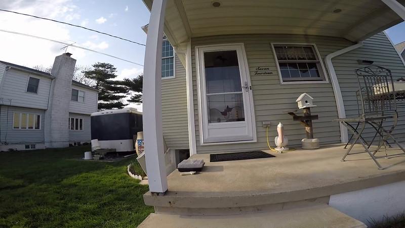 Dove Nest On Porch.mp4