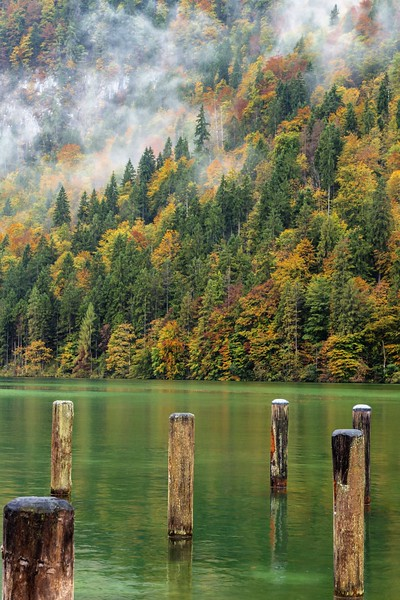 Autumn Lake Poles
