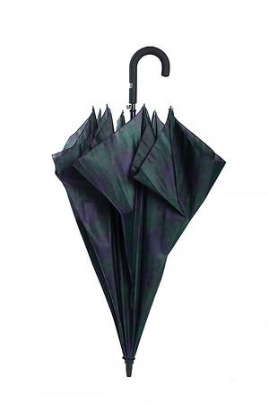 2015-04-13 Зонтики