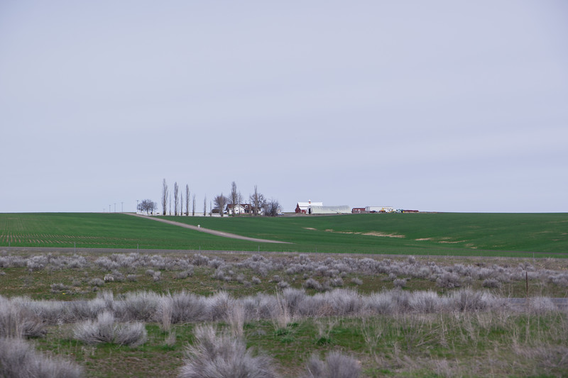 Washington Farm