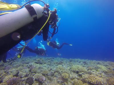 2017 蘭嶼潛水團