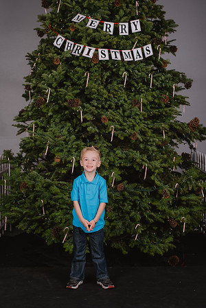 Christmas Tree Photos