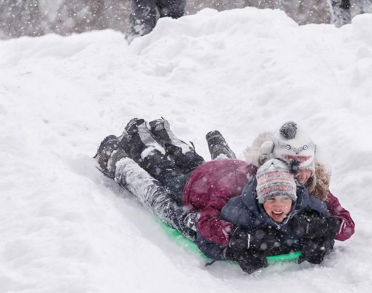 library hill sledding-34.jpg