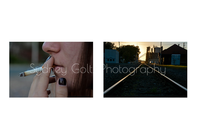 sydney_goltz_diptych1-2.jpg