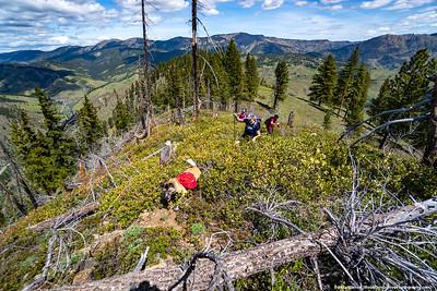 2019 - Tibbets Mtn Hike
