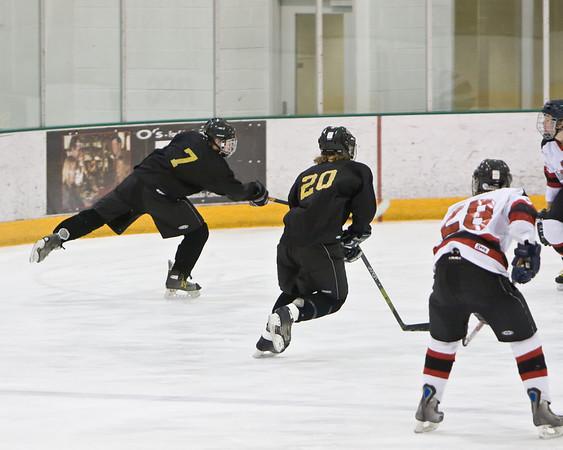 Windsor/Loveland/TV Ice Hockey vs Fairview 4-27-08
