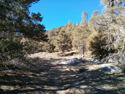 Owens Peak - January 8, 2014