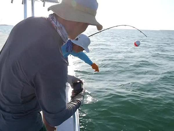 big torch key shark fishing