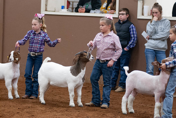 Wilburton Winter Classic Goat Showmanship & Doe Show