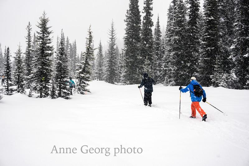 snowy-trail.jpg