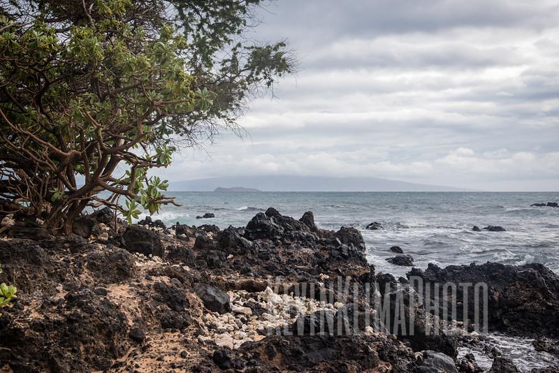Maui2016-024.jpg