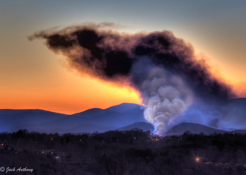 20120310-forestfire_5574_5_6.jpg