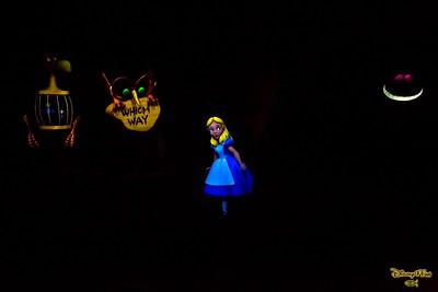 Disneyland July 2015 - 6D