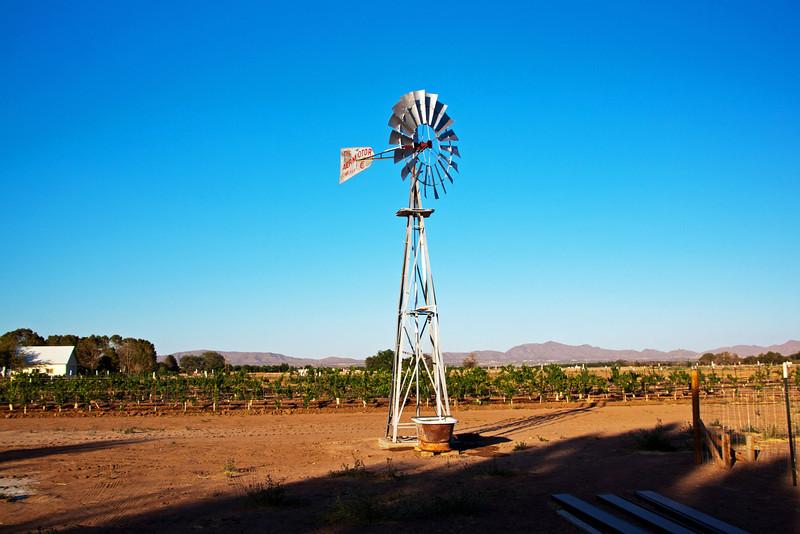 IMG_5592 windmill.jpg
