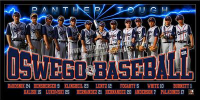 2012 14U Panther Blue Team Poster