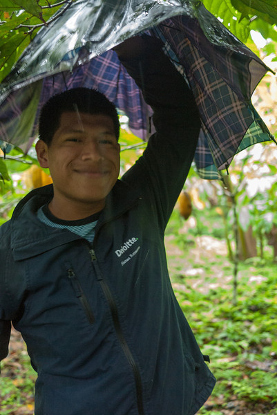 Arnoldo, our guide, explains the history and farming of the cacao plants.
