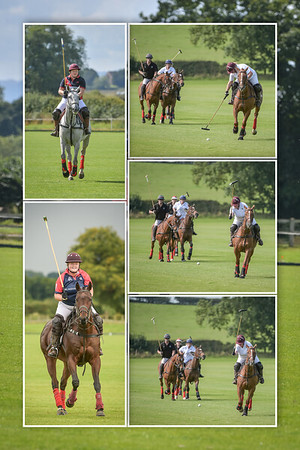 Polo Montages