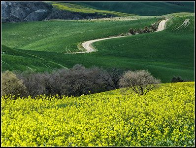 Siena - Terre di Siena