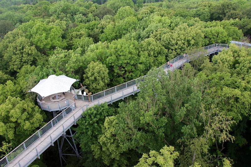 Hainich National Park
