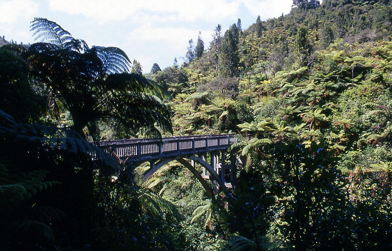 NZ_007.jpg