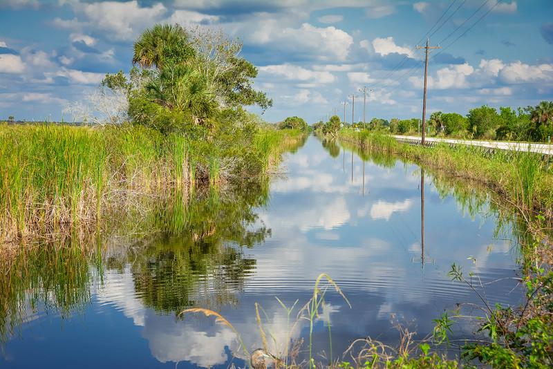 Everglades-43.jpg