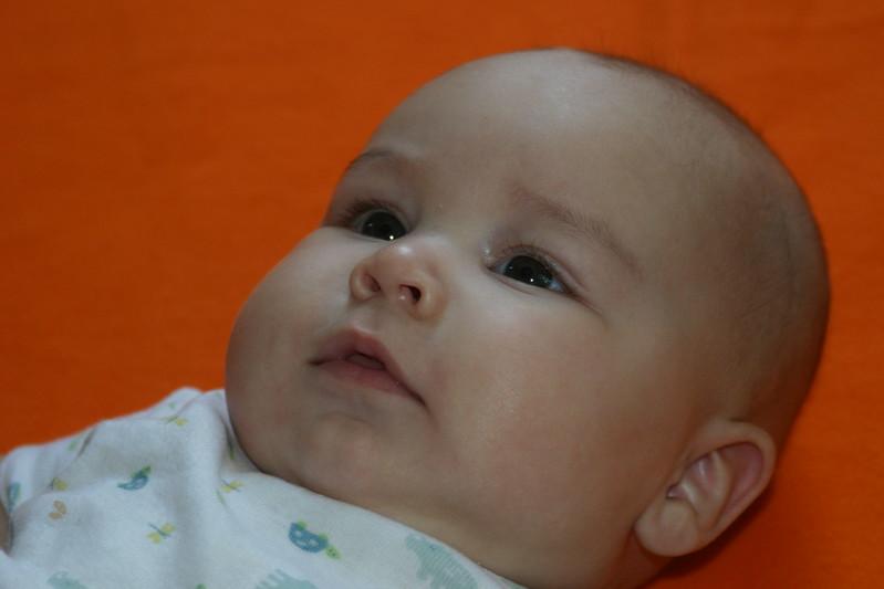 Babies-12.jpg