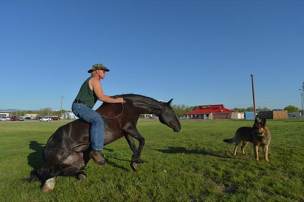 The Horse Flopper