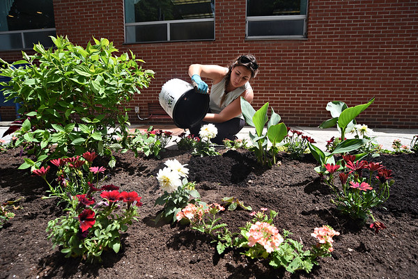 Downtown flower planting - 060821