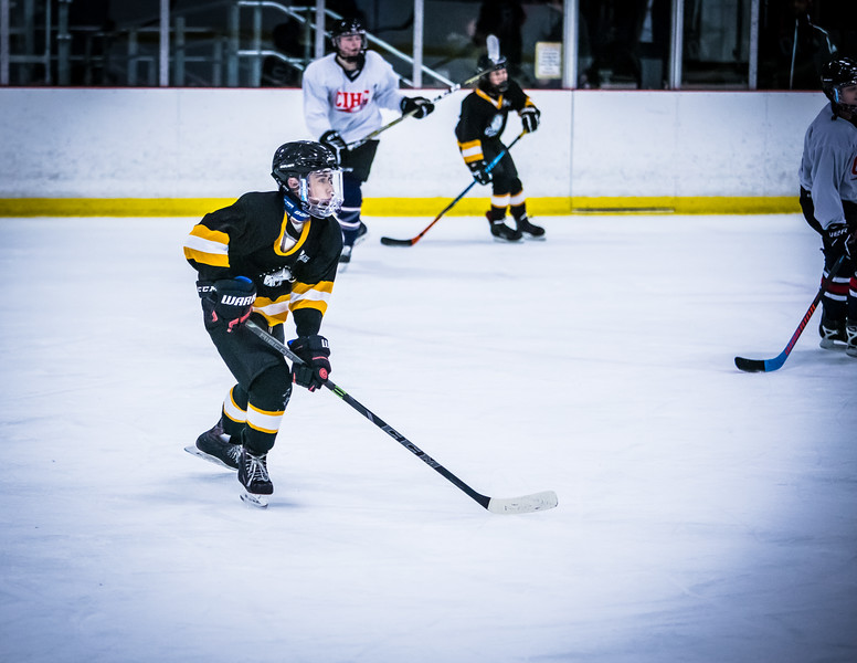 Bruins2-471.jpg