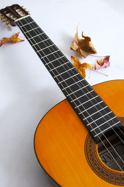 GuitarwithMapleLeaves_IMG_0008.png