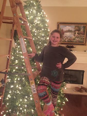 Putting up the Xmas Tree