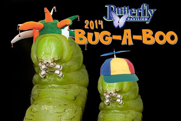 2014 Bug-A-Boo Concept Art