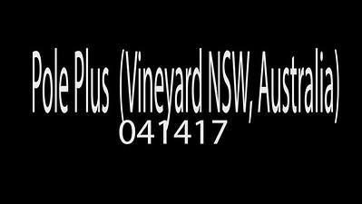Pole Plus (Vineyard, NSW, Australia) 041417