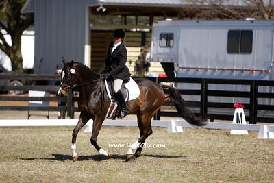 2010-03-14 USEA Horse Trial