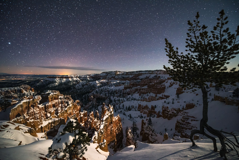 Bryce Canyon Starry Night