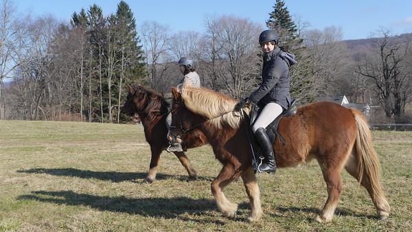 Felicia Rides Prestur and Ziggy