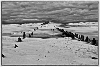 Saugatuck Harbor in the Winter #1