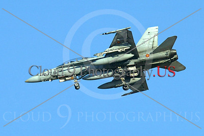 Spanish Air Force McDonnell Douglas F-18 Hornet Pictures
