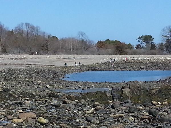 TRHS Beach Clean-up Field Trip