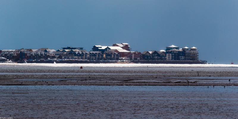 Shimmering Exmouth