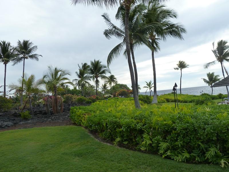 Hawaii 2017 041.JPG