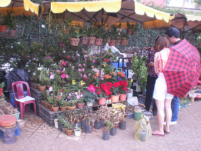 Dalat - Central Market - Around town