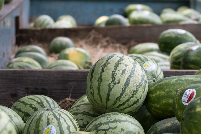 summer is melons for sale